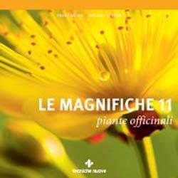 Le magnifiche 11 piante officinali
