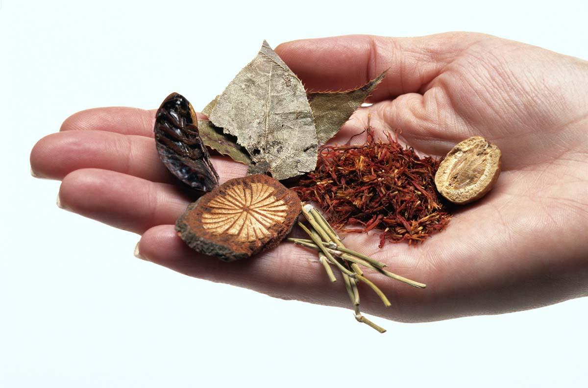 Primavera tempo di rigenerazione - Tonici e ricostituenti  naturali