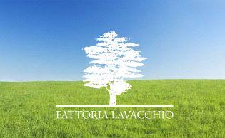 Fattoria Lavacchio - Nella Toscana da cartolina