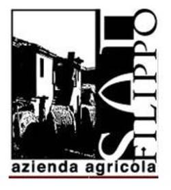 Azienda vinicola San Filippo - Offida rosso Lupo del Ciafone