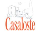 Azienda vinicola Fattoria Casaloste - Chianti Classico Riserva Don Vincenzo