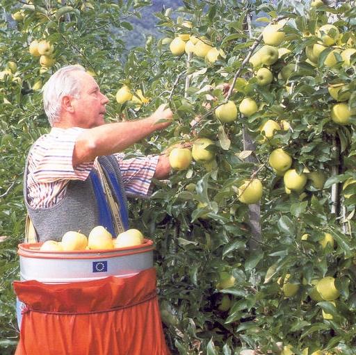 Provincia di Bolzano - Più ricerca e formazione per l'agricoltura biologica