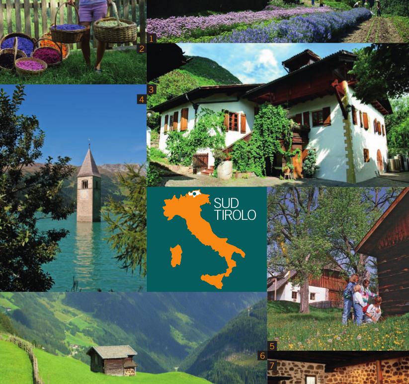 Vacanze in Alto Adige - Alto Adige a tu per tu con la natura