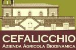 Azienda vinicola Cefalicchio - Rosso Canosa Riserva Romanico