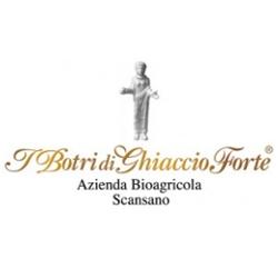 Azienda vinicola I Botri di Ghiaccio Forte - Morellino di Scansano Riserva Vigna i Botri