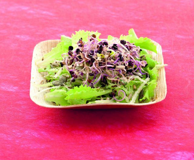 Insalata mista con germogli di ravanelli ai 4 semi