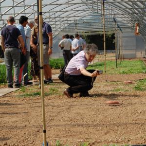 CREA - Ricerche per l'agricoltura biologica
