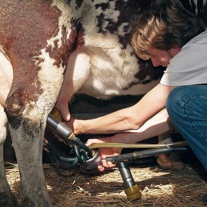 Consumi e ricerca - Un progetto per sostenere la filiera del latte bio