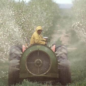 Agricoltura, alimentazione e salute - 'No ai pesticidi!': ora anche sui social network