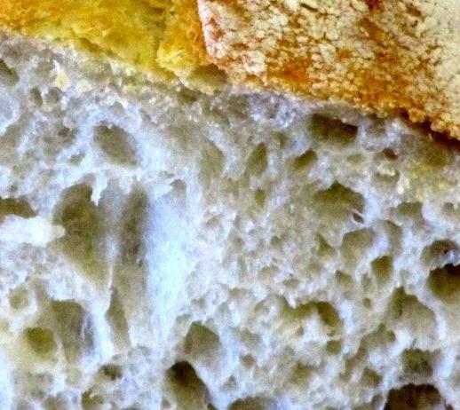 Pane-lievitazione-naturale 518