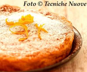 Torta arancia capano 518
