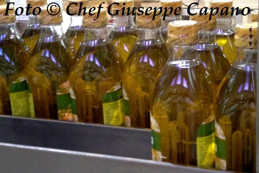 Bottiglie olio vario 518