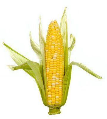 Pannocchia di mais