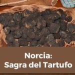 sagra_del_tartufo