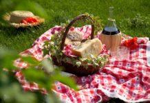picnictrevi