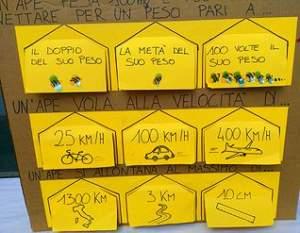 Cartello api 2 318