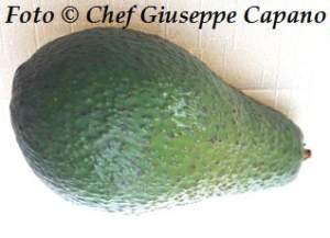 Avocado capovolto 318
