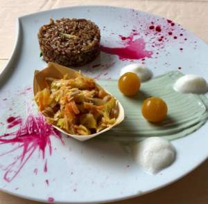Ai confini del blu. Ricetta di Barbara Ghizzoni, riso rosso agrodolce con insalatina soyanese all'alga spirulina e sfere di carote