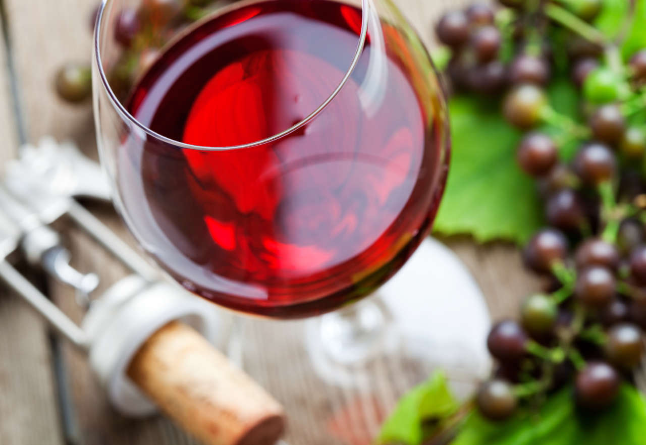 Salone mondiale dei vini bio (Francia)