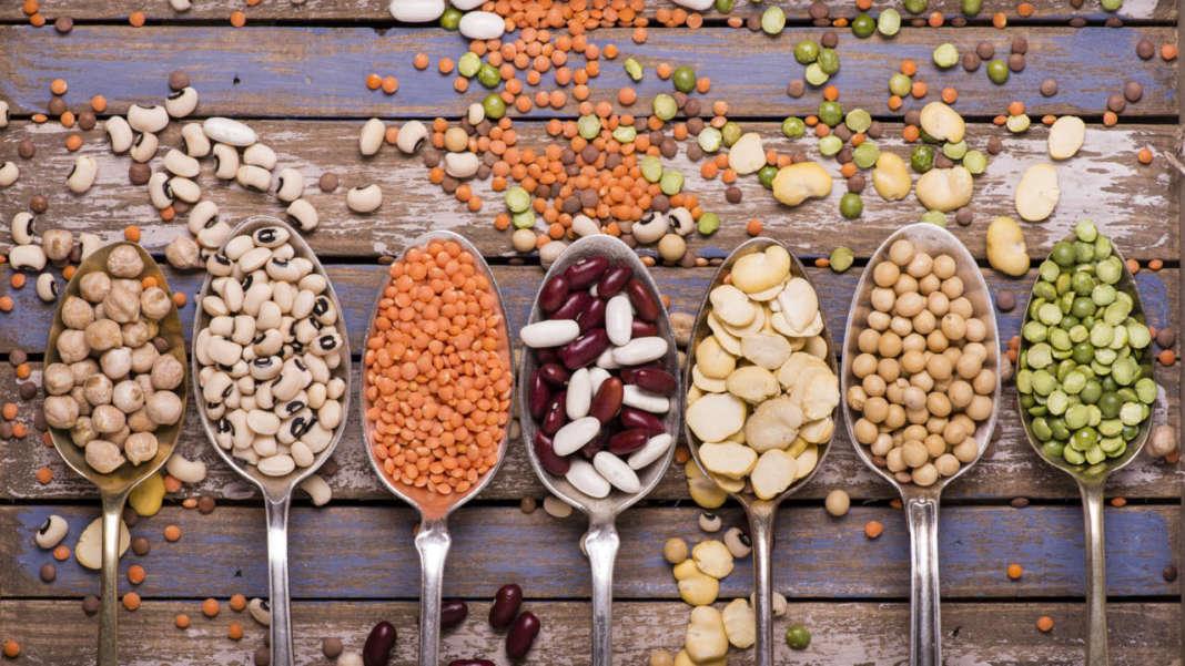 diversi tipi di legumi secchi ordinati in cucchiai
