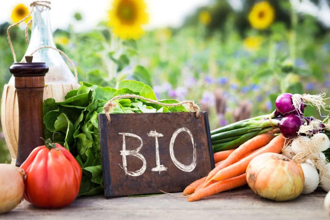 carote, cipolle e altri ortaggi biologici con cartello con scritto BIO