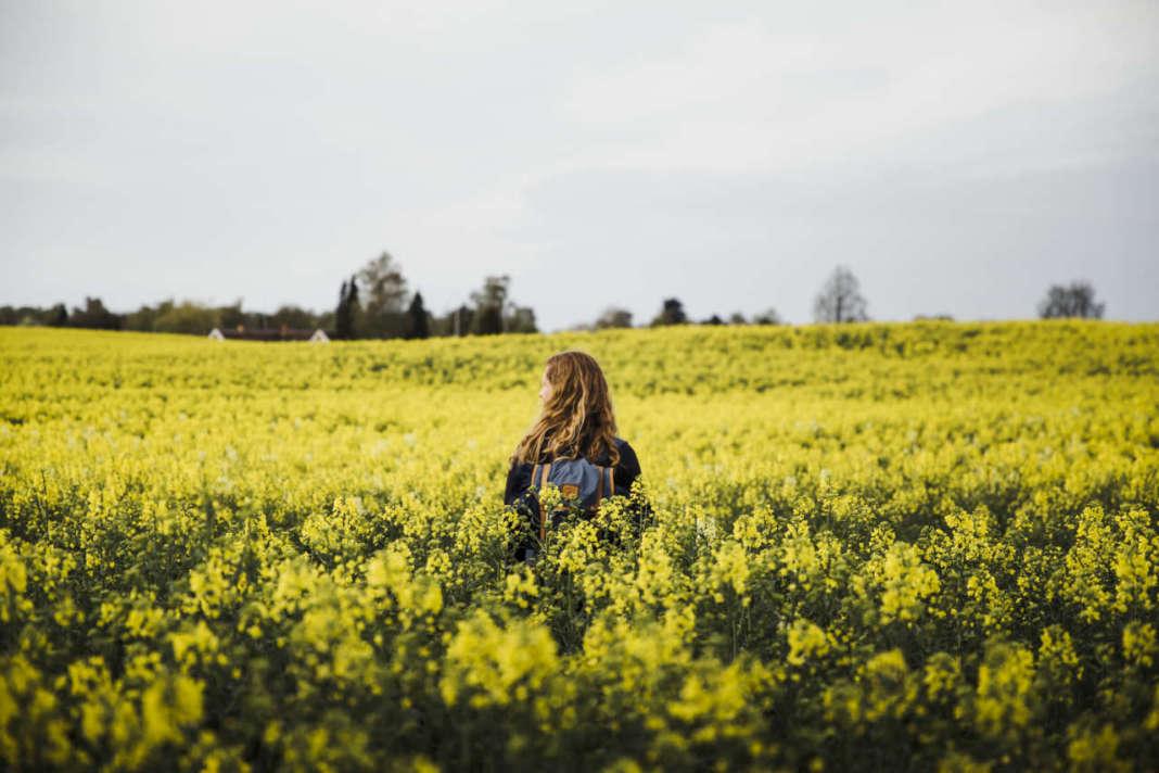 donna in campo bio in Danimarca