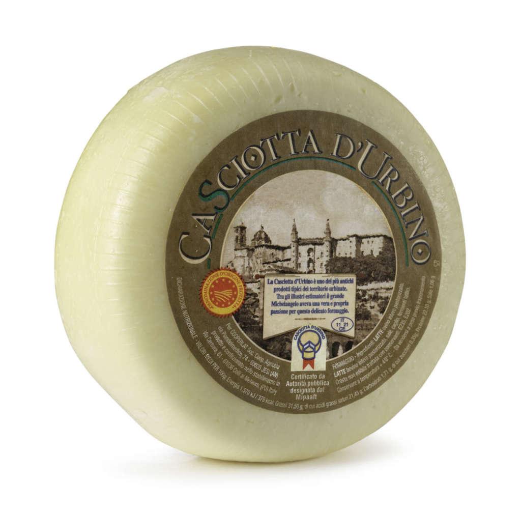 forma di formaggio marchigiano Casciotta d'Urbino Dop