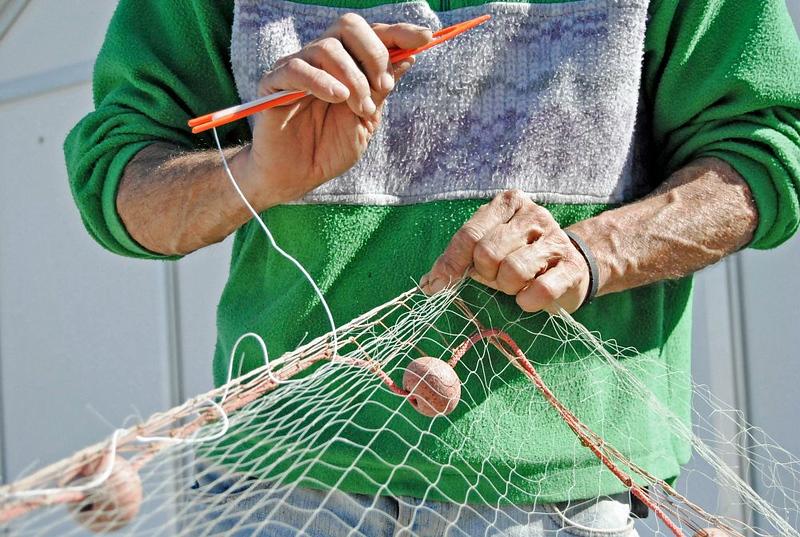 Slow Fish: in Liguria, prima in digitale e poi dal vivo