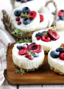 Mini dessert frozen yogurt